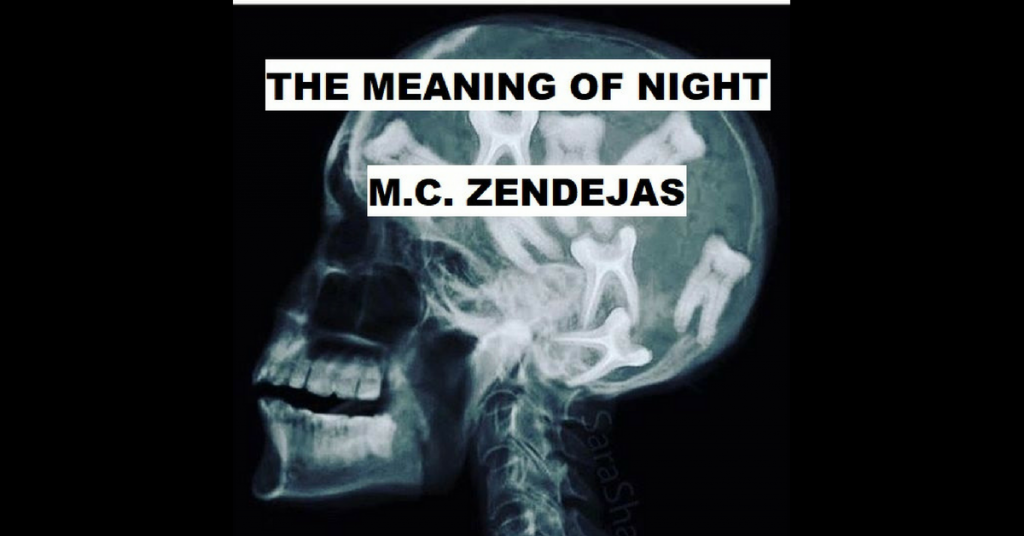 MEANING OF NIGHT by M. C. Zendejas