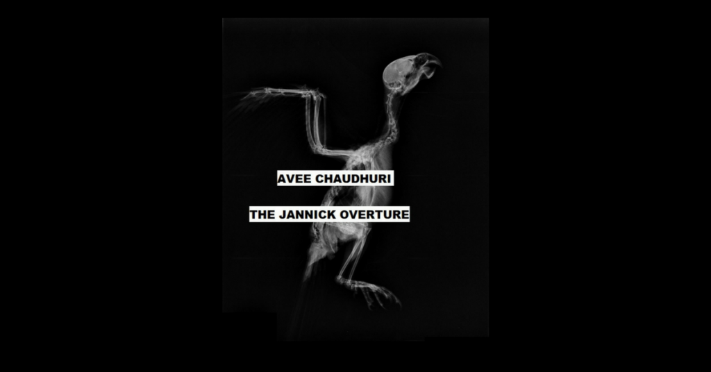 THE JANNICK OVERTURE by Avee Chaudhuri