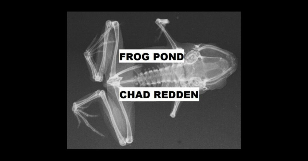 FROG POND by Chad Redden