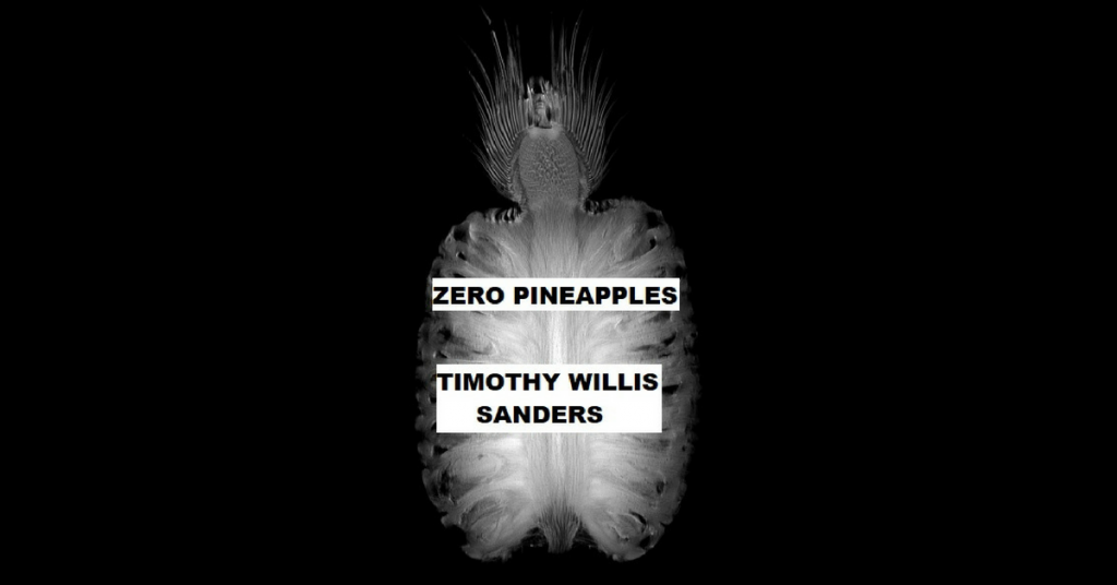 ZERO PINEAPPLES by Timothy Willis Sanders
