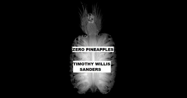 timothy willis sanders