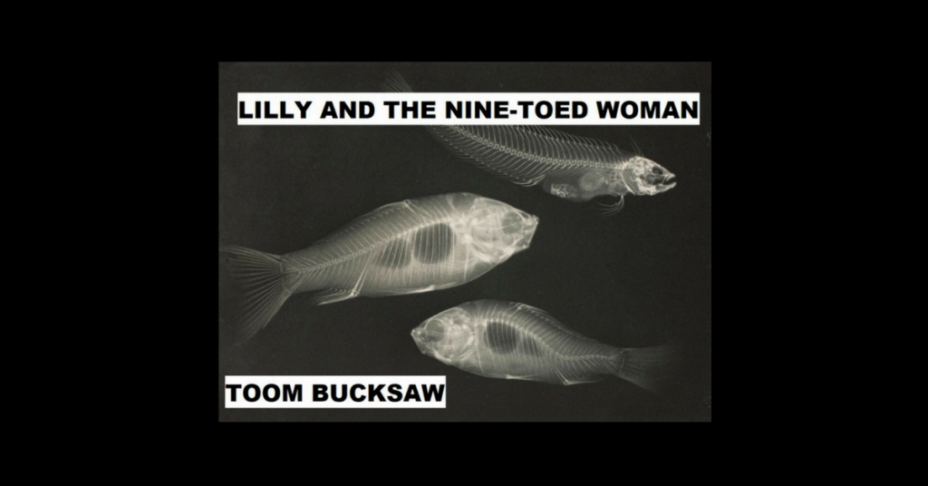 LILLY AND THE NINE-TOED WOMAN by Toom Bucksaw
