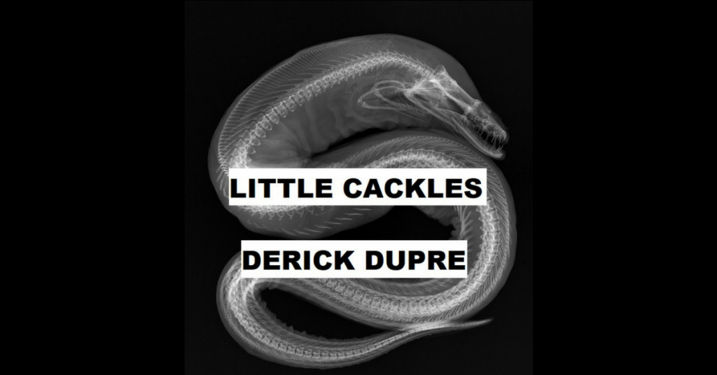 LITTLE CACKLES by Derick Dupre