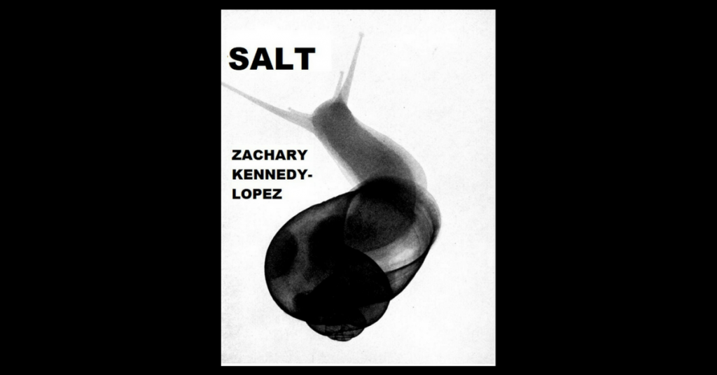 SALT by Zachary Kennedy-Lopez