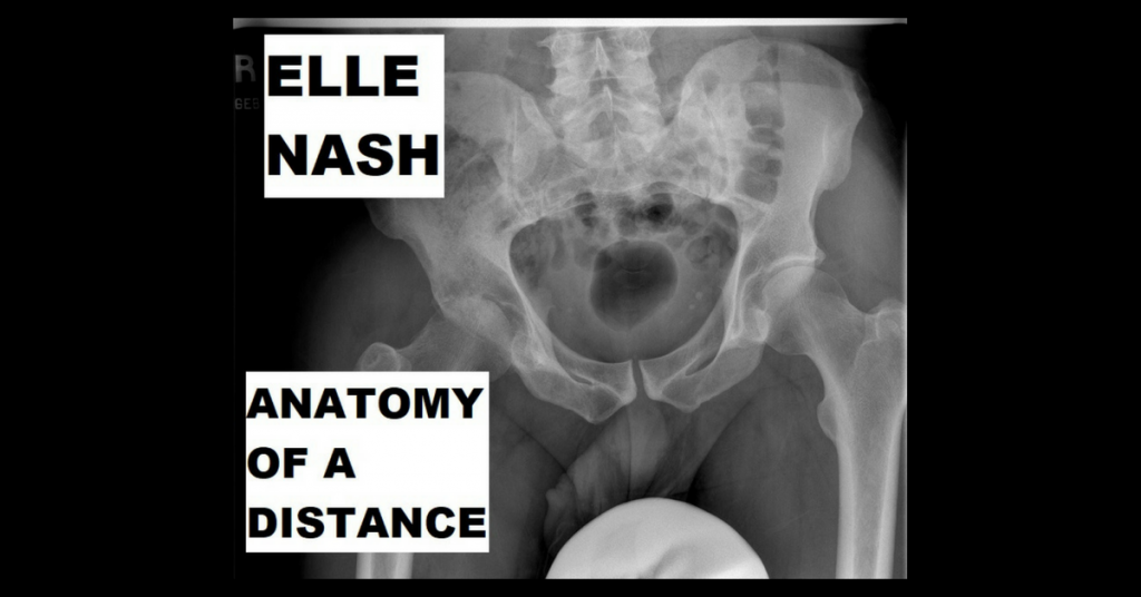 ANATOMY OF A DISTANCE by Elle Nash