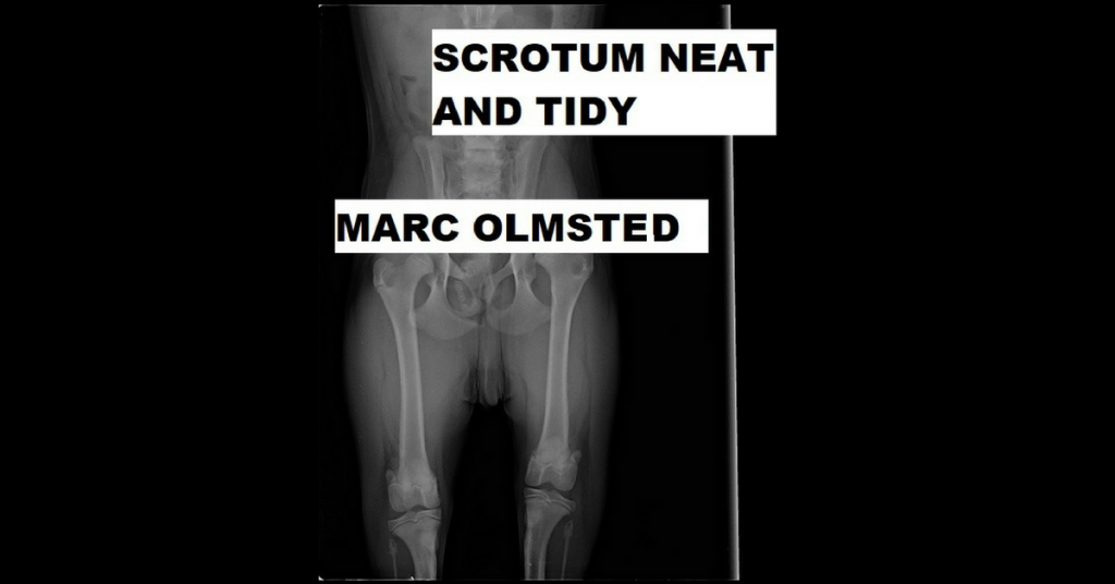 SCROTUM NEAT AND TIDY by Marc Olmsted