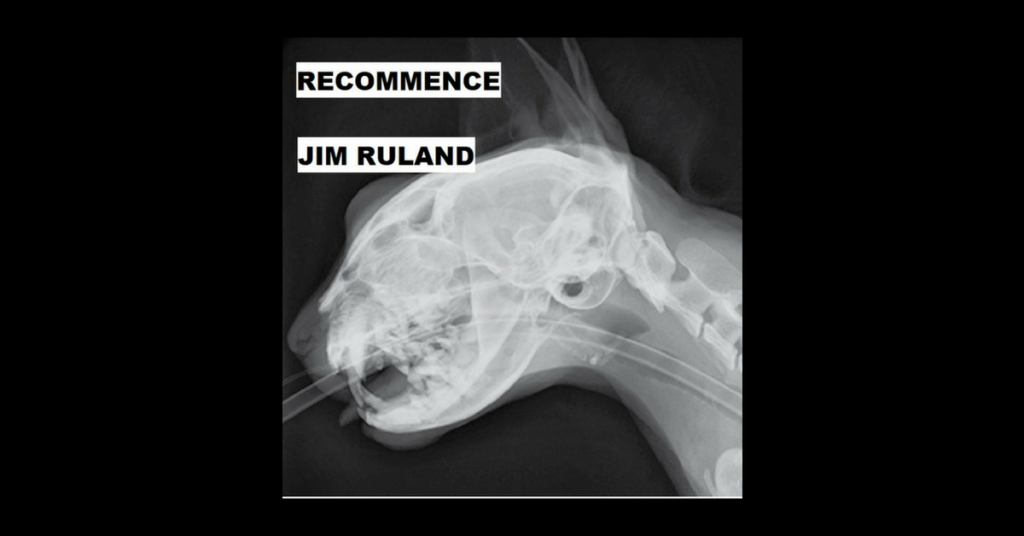 RECOMMENCE by Jim Ruland