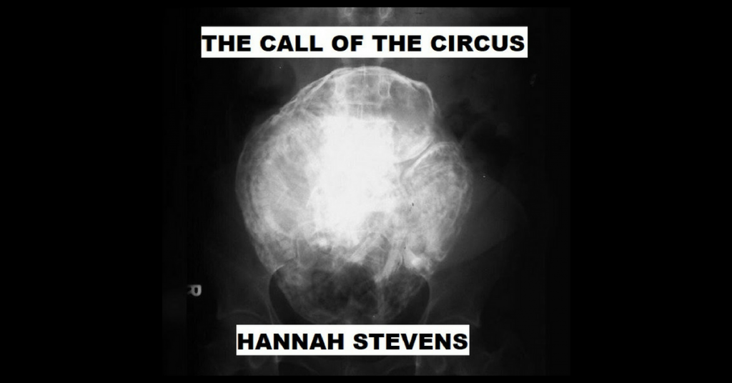 CALL OF THE CIRCUS by Hannah Stevens