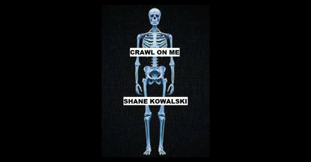 shane kowalski