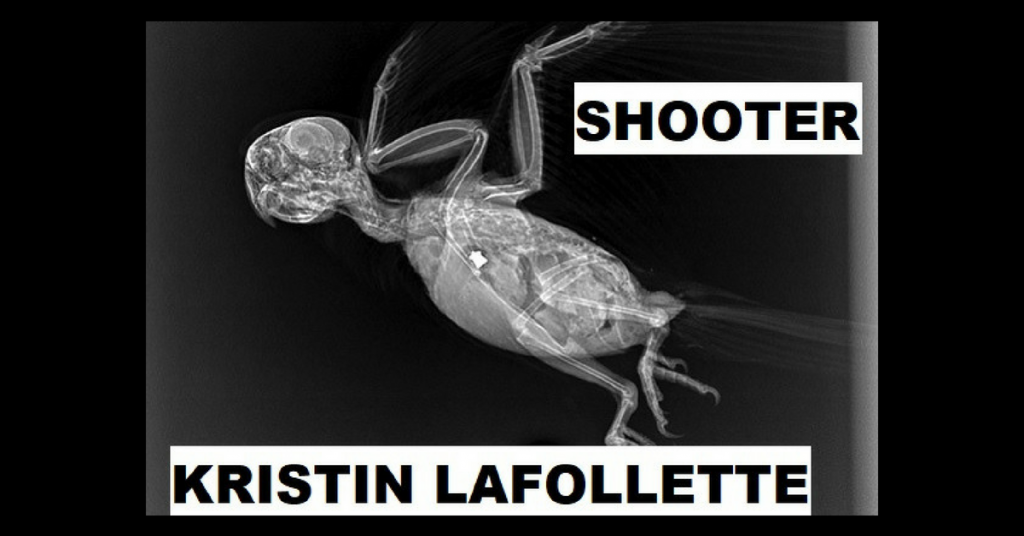 SHOOTER by Kristin LaFollette