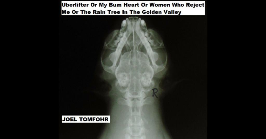 UBERLIFTER OR MY BUM HEART OR WOMEN WHO REJECT ME OR THE RAIN TREE IN THE GOLDEN VALLEY by Joel Tomfohr