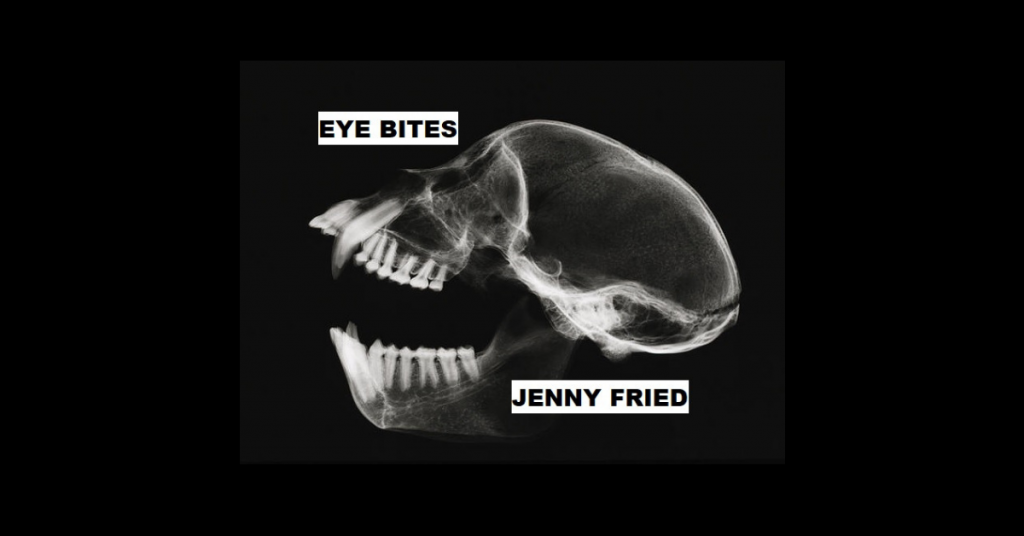 EYE BITES by Jenny Fried