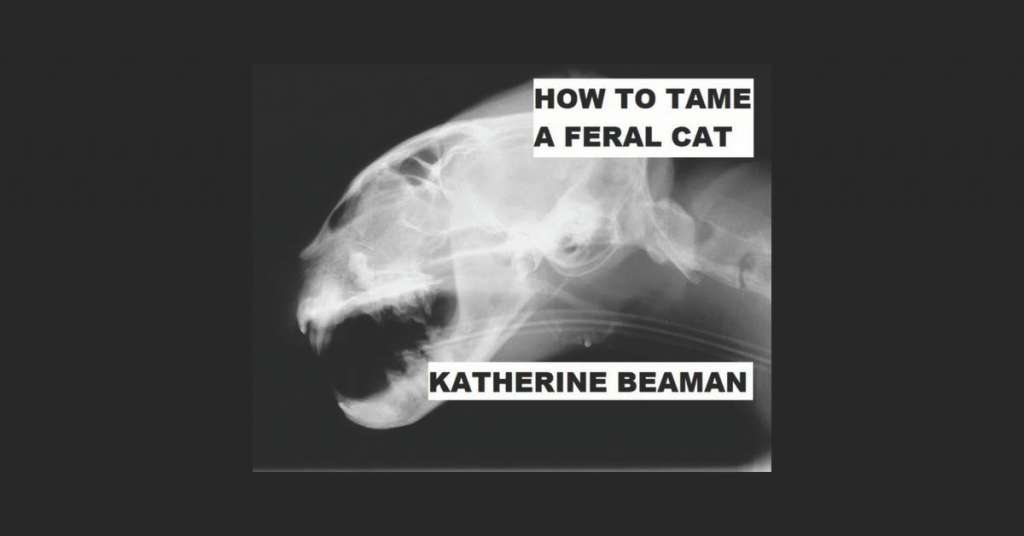 HOW TO TAME A FERAL CAT by Katherine Beaman
