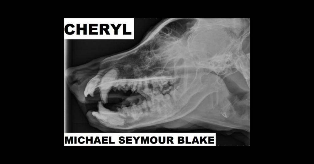 CHERYL by Michael Seymour Blake