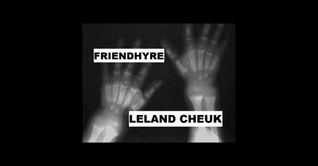 FRIENDHYRE by Leland Cheuk