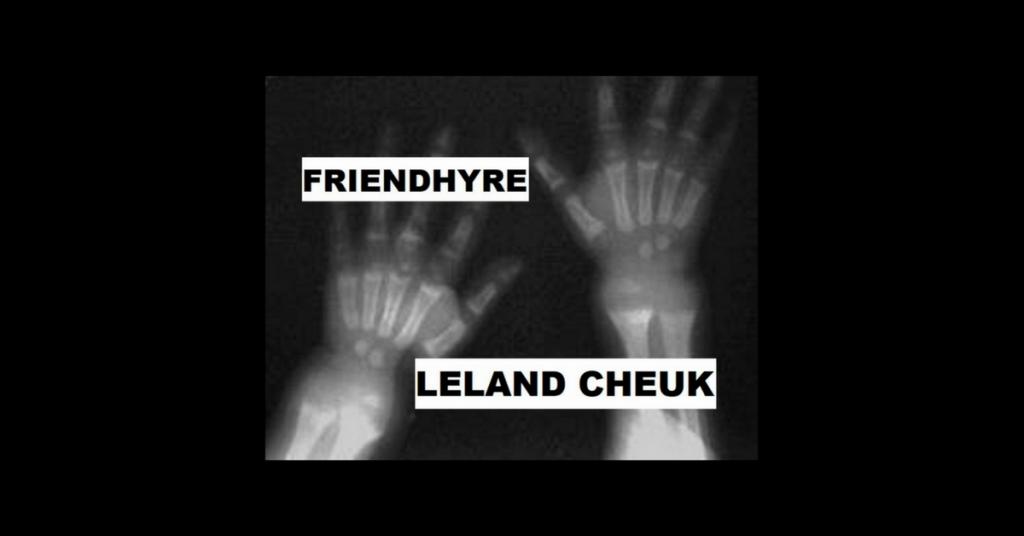 FRIENDHYRE by Leland Cheuk