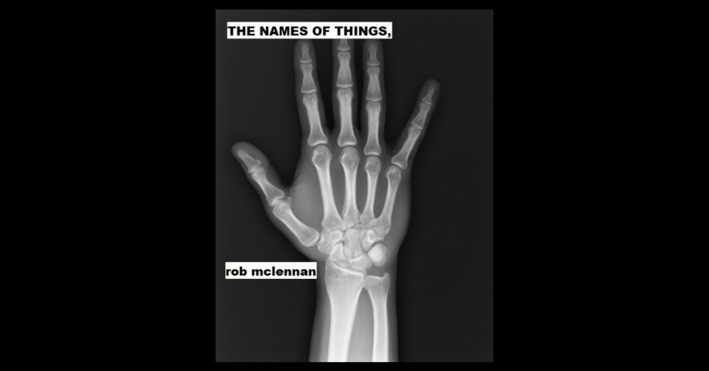 THE NAMES OF THINGS, by rob mclennan