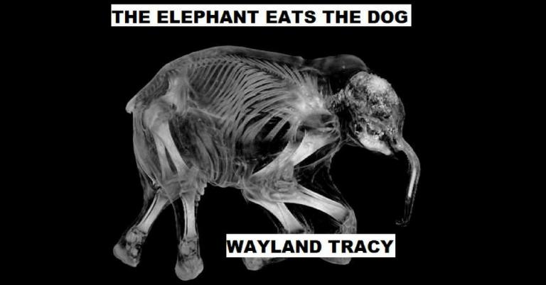 wayland tracy