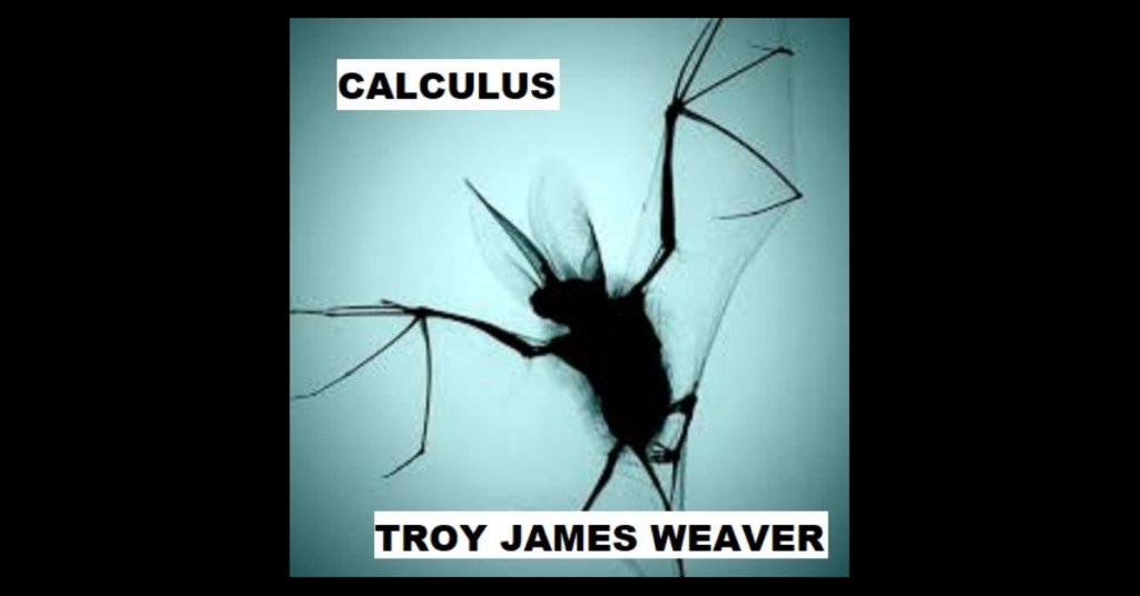 CALCULUS by Troy James Weaver