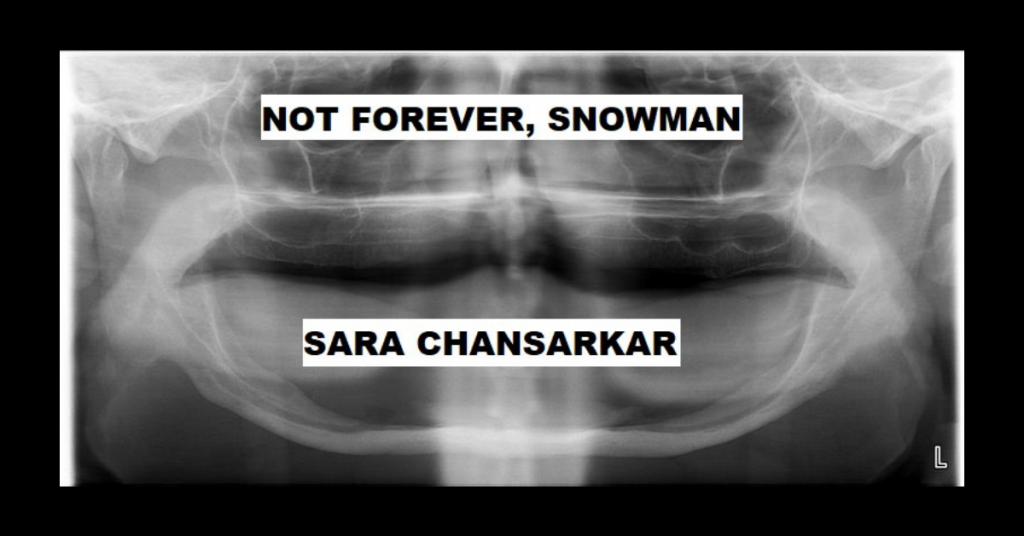 NOT FOREVER, SNOWMAN by Sara Chansarkar