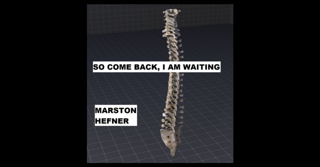 SO COME BACK, I AM WAITING by Marston Hefner