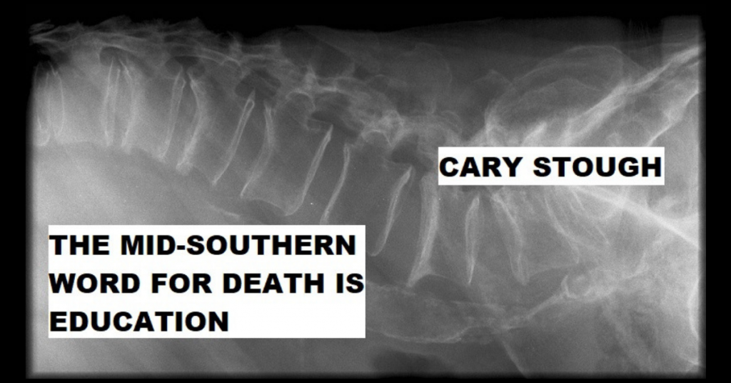 THE MID-SOUTHERN WORD FOR DEATH IS EDUCATION by Cary Stough