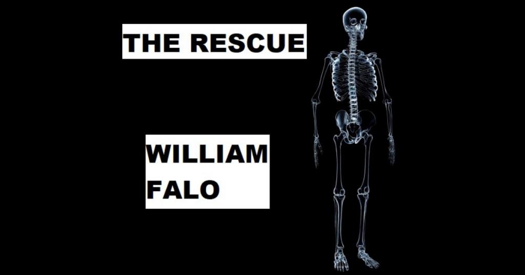 THE RESCUE by William Falo