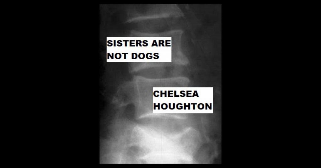 SISTERS ARE NOT DOGS by Chelsea Houghton