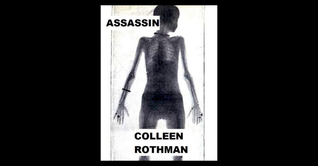ASSASSIN by Colleen Rothman