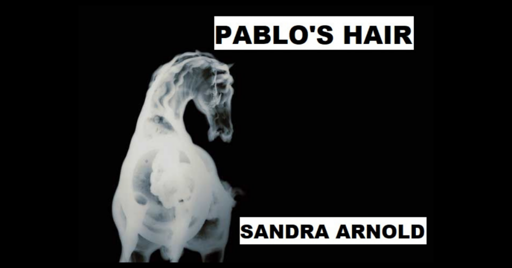 PABLO'S HAIR by Sandra Arnold