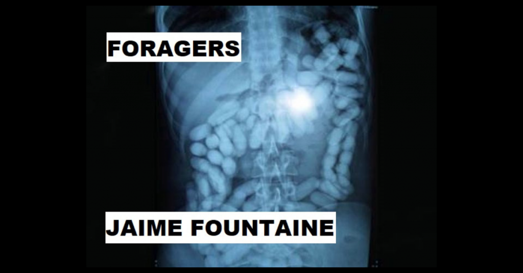 FORAGERS by Jaime Fountaine