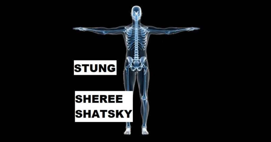 STUNG by Sheree Shatsky