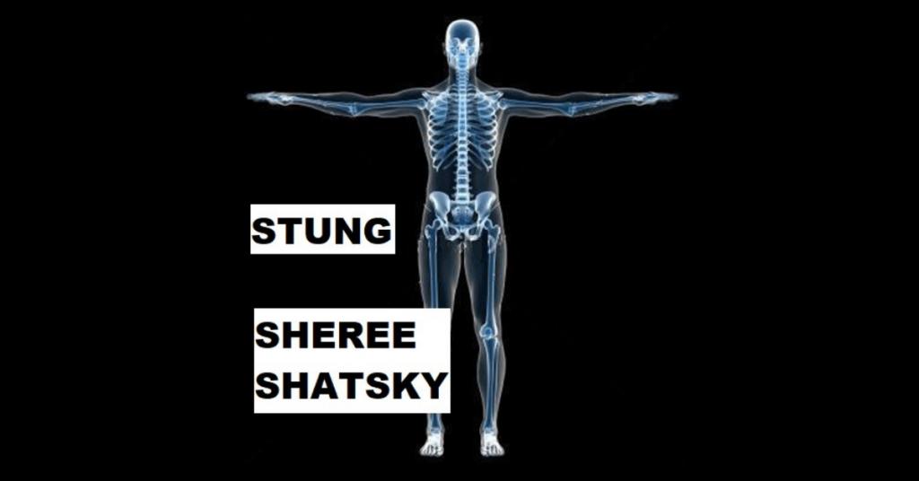STUNG by Sheree Shatsky