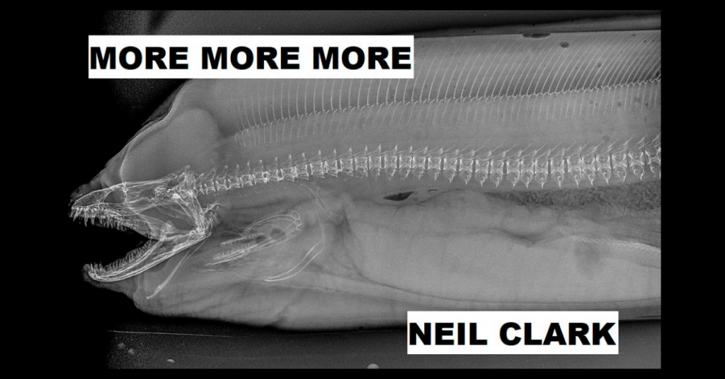 MORE MORE MORE by Neil Clark