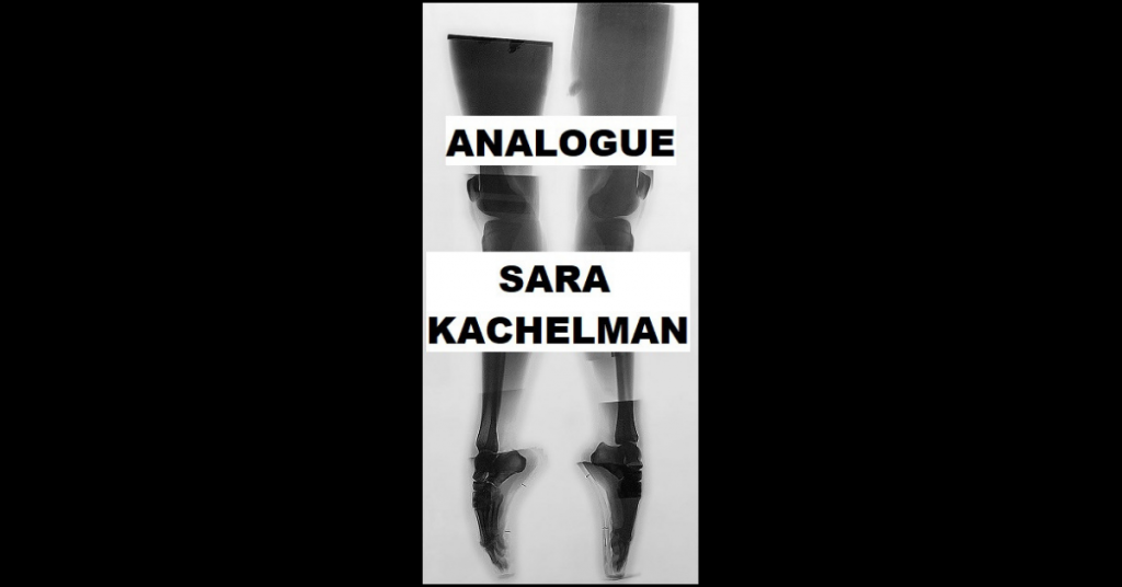 ANALOGUE by Sara Kachelman