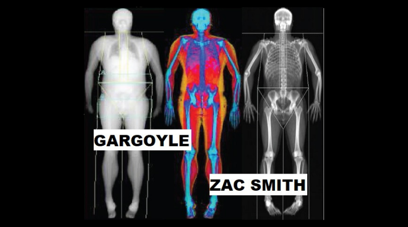 GARGOYLE by Zac Smith