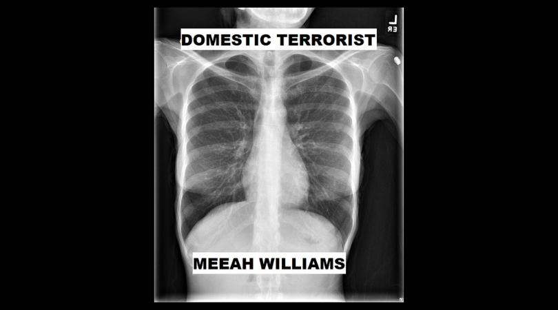DOMESTIC TERRORIST by Meeah Williams