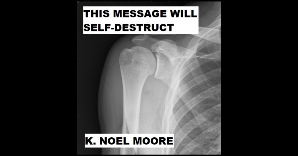 THIS MESSAGE WILL SELF-DESTRUCT by K. Noel Moore