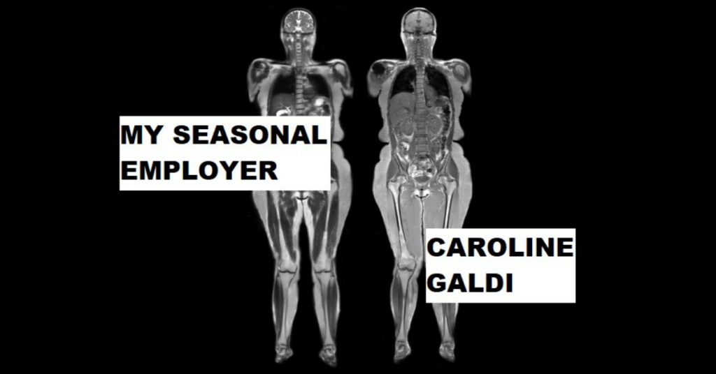 MY SEASONAL EMPLOYER by Caroline Galdi