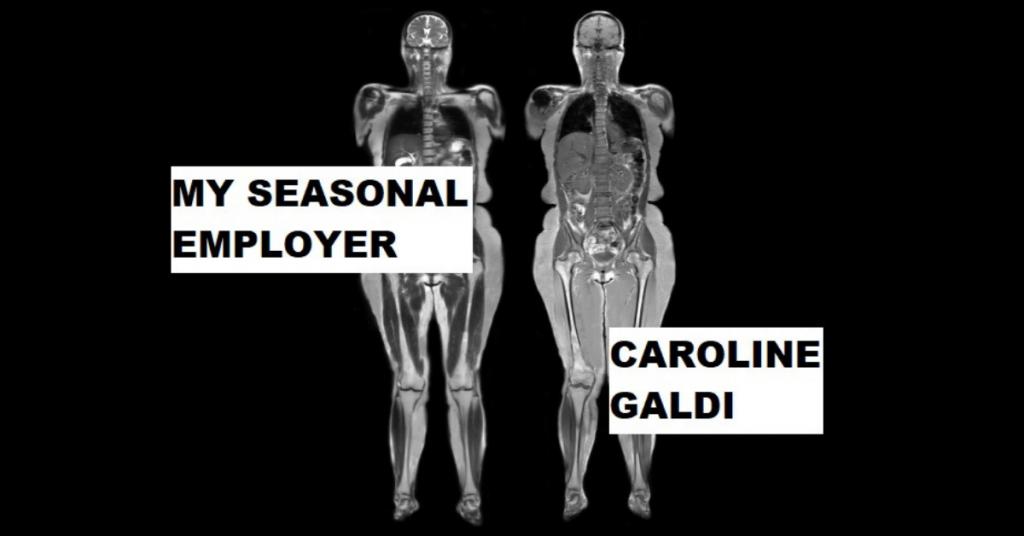MY SEASONAL EMPLOYER by Caroline Galdi