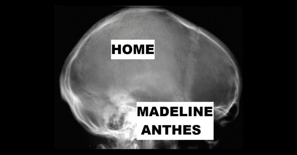 HOME by Madeline Anthes