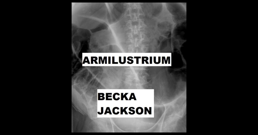 ARMILUSTRIUM by Rebecca Otter