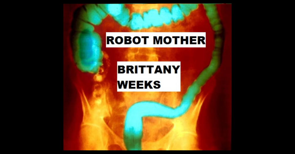 ROBOT MOTHER by Brittany Weeks