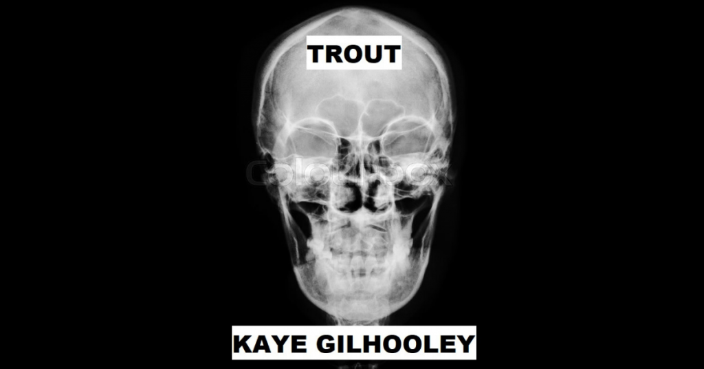 TROUT by Kaye Gilhooley