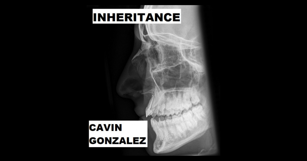 INHERITANCE by Cavin Bryce Gonzalez