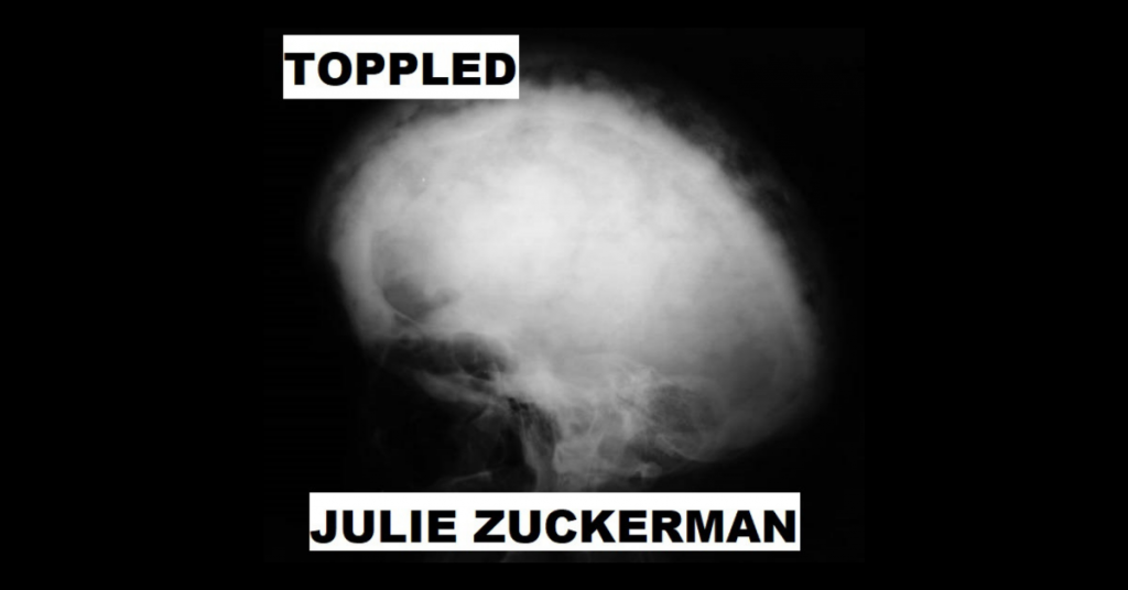 TOPPLED by Julie Zuckerman