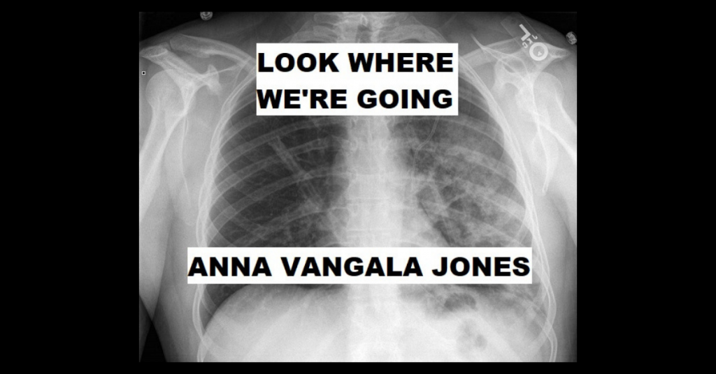 LOOK WHERE WE'RE GOING by Anna Vangala Jones