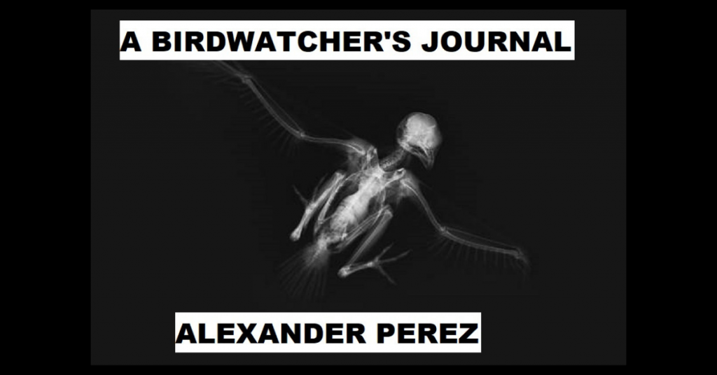 A BIRDWATCHER'S JOURNAL by Alexander Perez