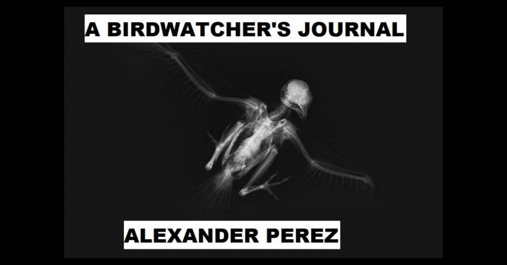 A BIRDWATCHER'S JOURNAL by Alexander Perez