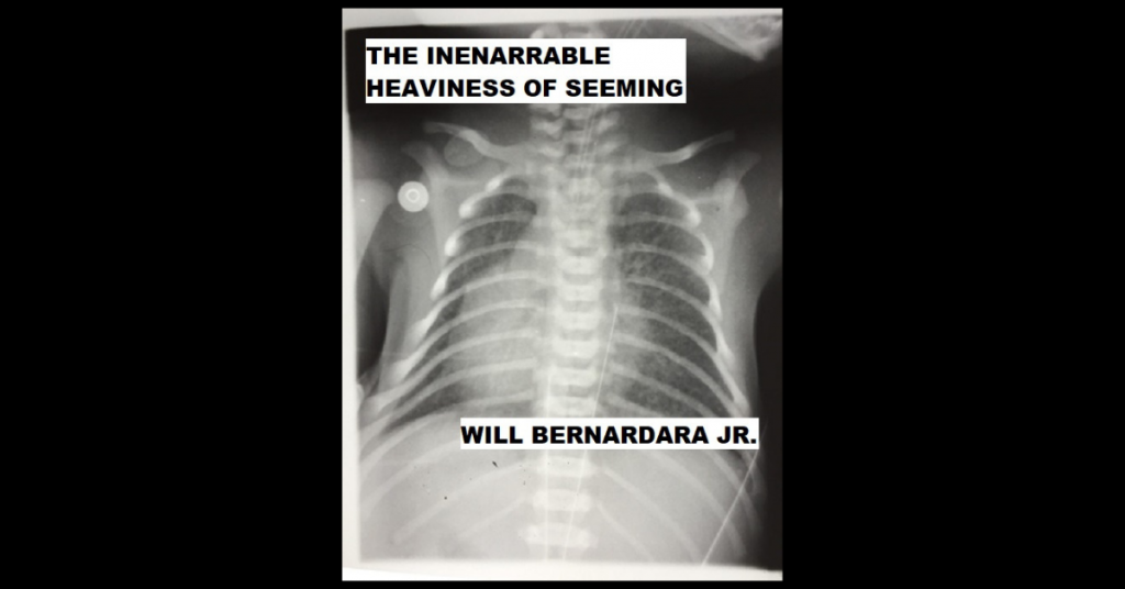 THE INENARRABLE HEAVINESS OF SEEMING by Will Bernardara Jr.